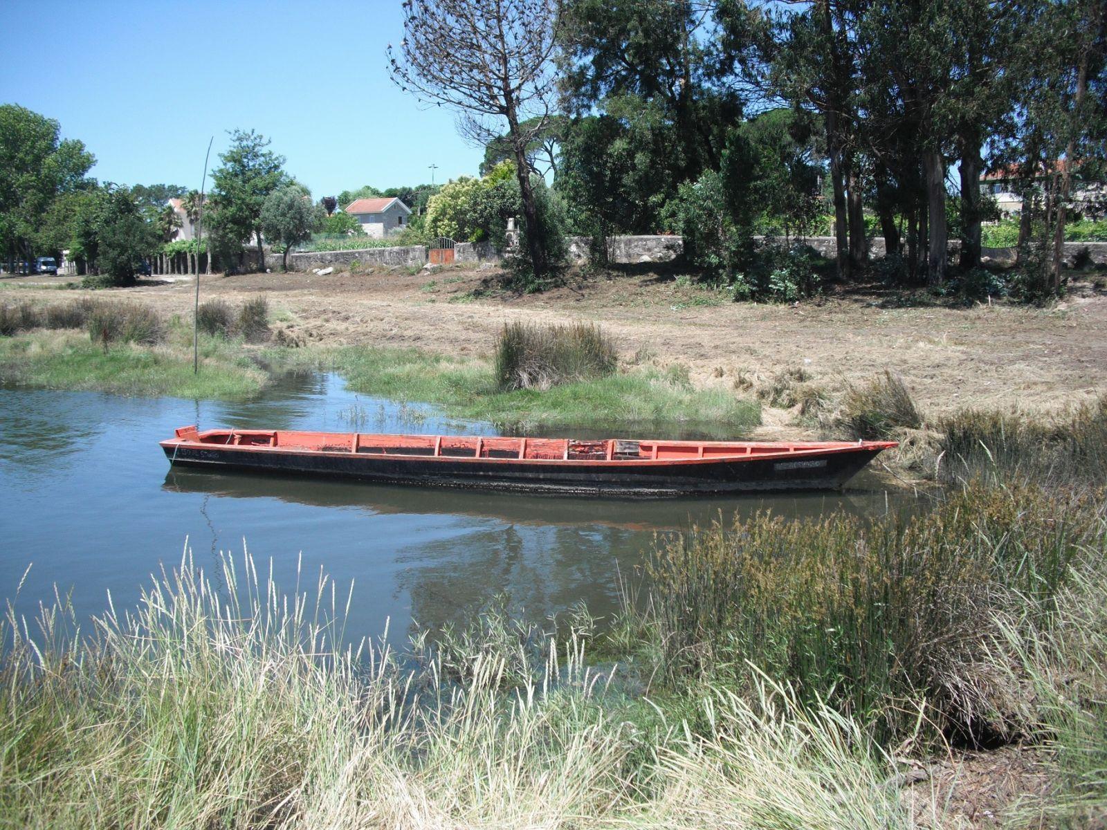 Barco do Porto(2)