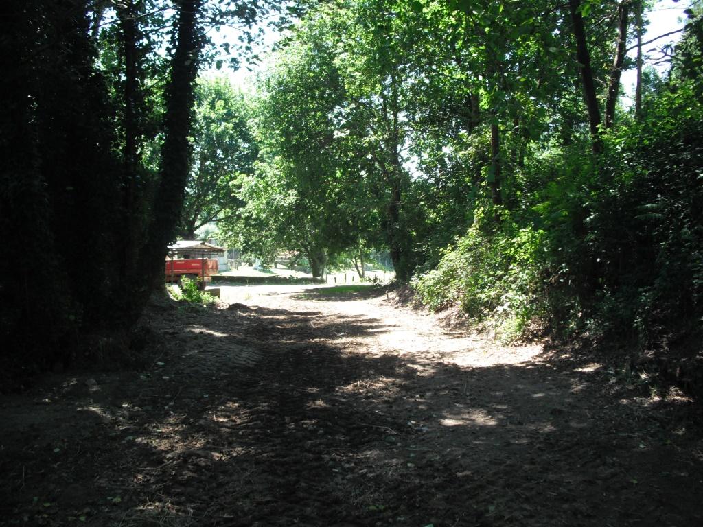 Rua do reguengo em Serreleis_2